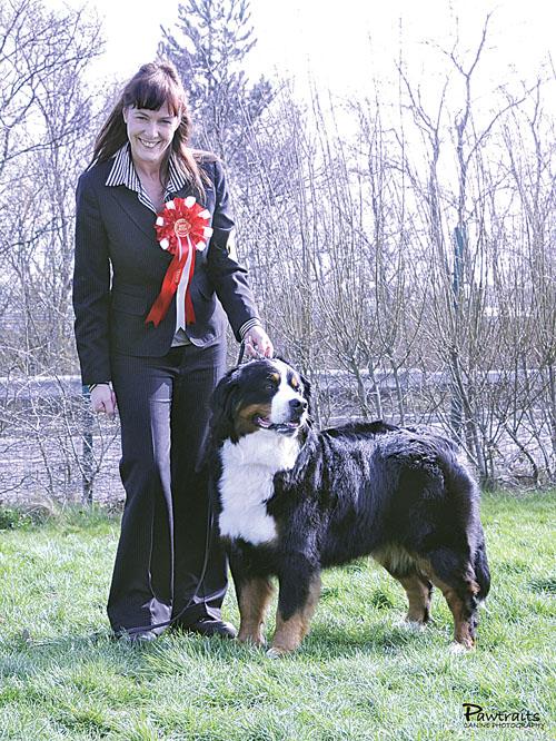 Dog Training Show On Saturday Morning