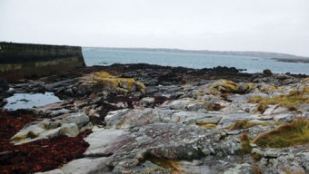 The sea at Ros a Mhíl, where Fleming's fish is landed and bought at auction.