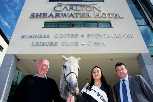 Advertiser Ie Ballinasloe Horse Fair Searching For A New