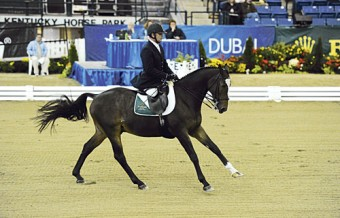Kilkenny's James Dwyer in action for the Irish Para Equestrian team.