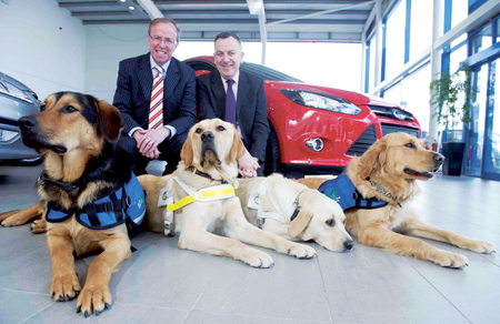 Eddie Murphy, managing director of Ford Ireland and Padraig Mallon, chief executive of Irish Guide Dogs for the Blind launch the car draw with a little help from dogs in training Hector, Megan, Kuta, and Creem