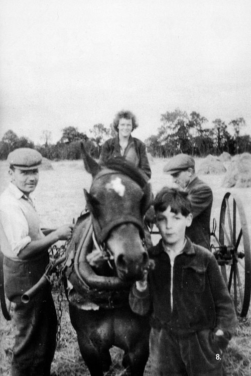 Saving the hay at Killimor was a family business with the help of a neighbour: Tony, and Ruth Monaghan, Paddy Reilly, and Eamon Monaghan.