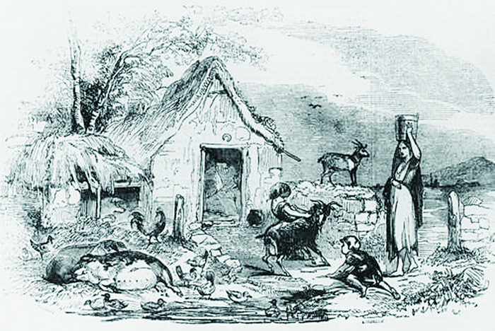 A poor peasant's cabin in pre-famine Ireland. The family and animals shared the same living space.