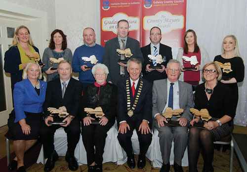 Mayor Liam Carroll and county manager Martina Moloney pictured with the award winners.