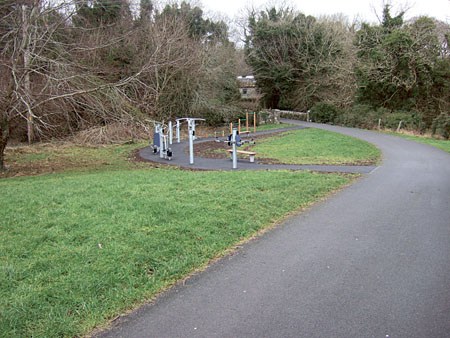 Gym in the park: The first outdoor gym for Galway is located in Rinville Park, Oranmore.