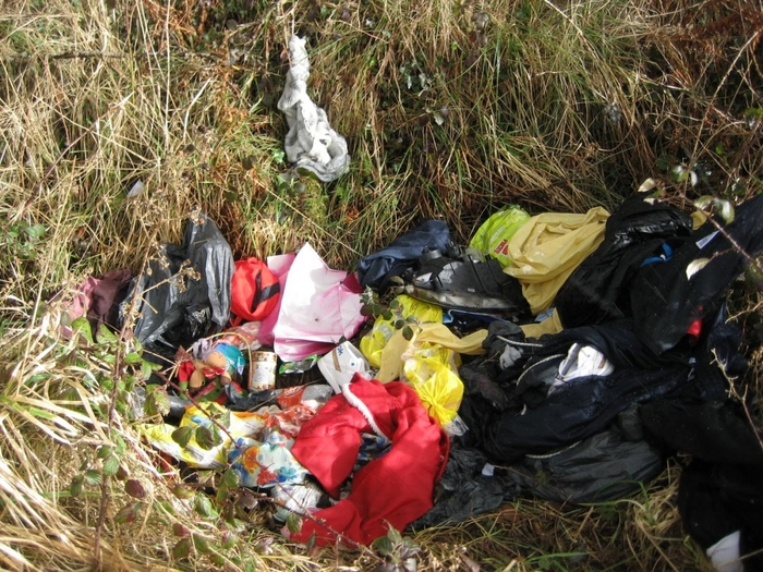 Dumping by a minority of householders continues to 'blight the county'. Photo: Mayo County Council.