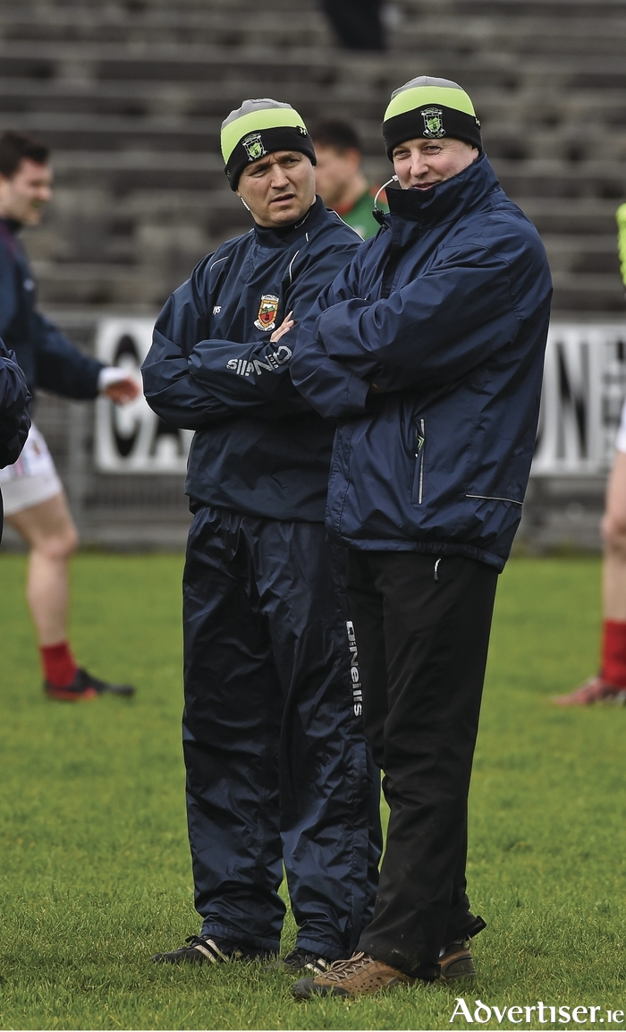 A lot learned: Pat Holmes feels his side learned a lot during the league. Photo: Sportsfile