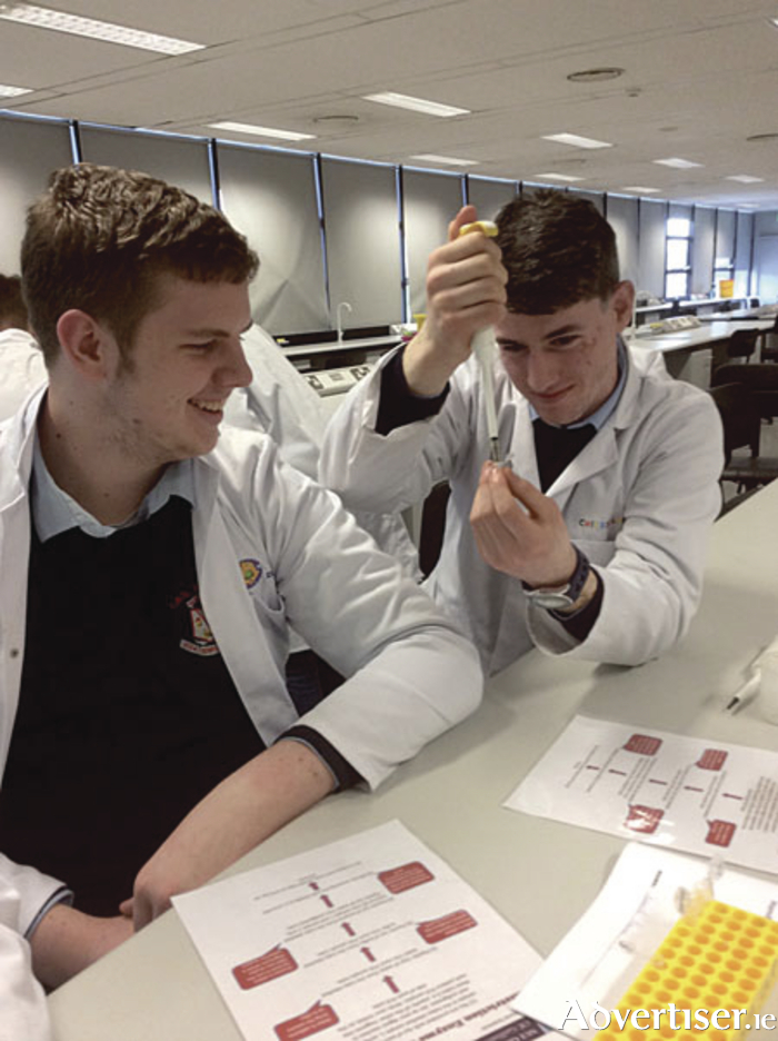 Secondary school students from CBS Roscommon experimenting with the DNA Day practical in NUI Galway laboratories.