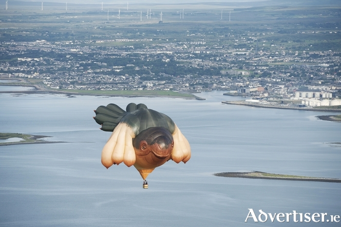 The Skywhale by Australian artist Patricia Piccinini.