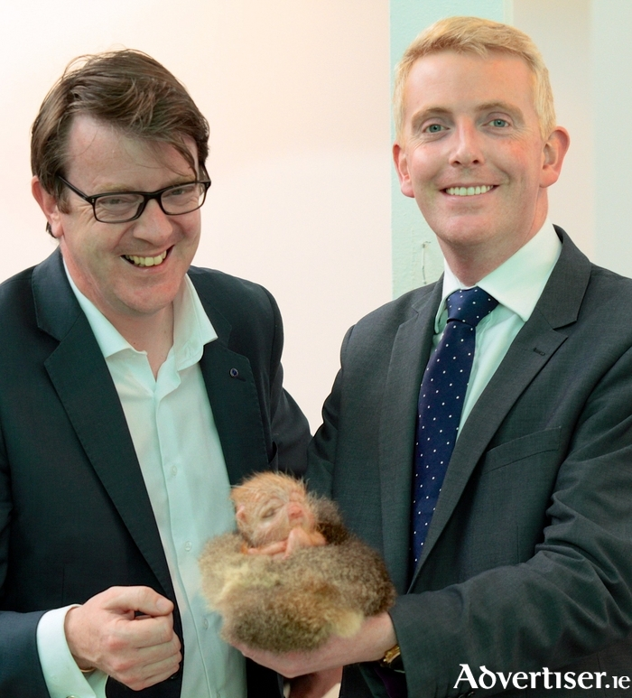 Labour Party Cllr Niall McNelis and Derek Nolan TD holding one of Patricia Piccinini creations at her Relativity exhibition as part of the summer's Galway International Arts Festival exhibition. Photo:- Mike Shaughnessy