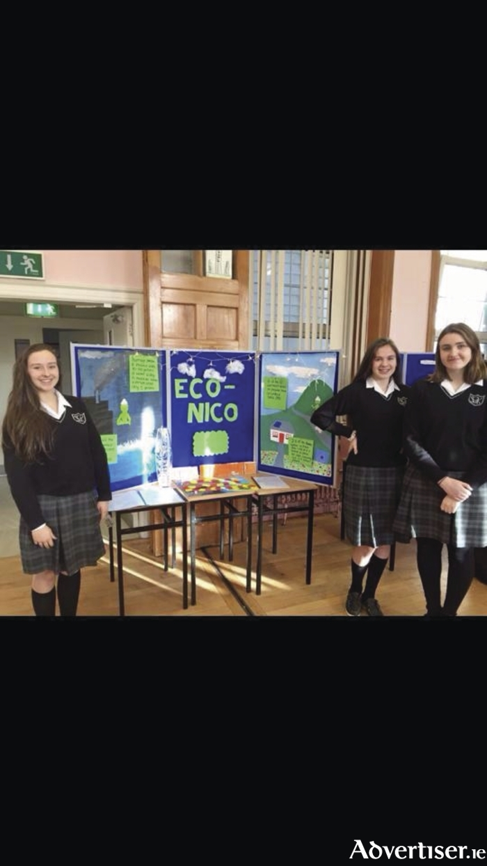 Eimear Mac Sweeney, Maria Fitzpatrick, and Grainne Galvin pictured with their Transition Year Eco-Nico project.