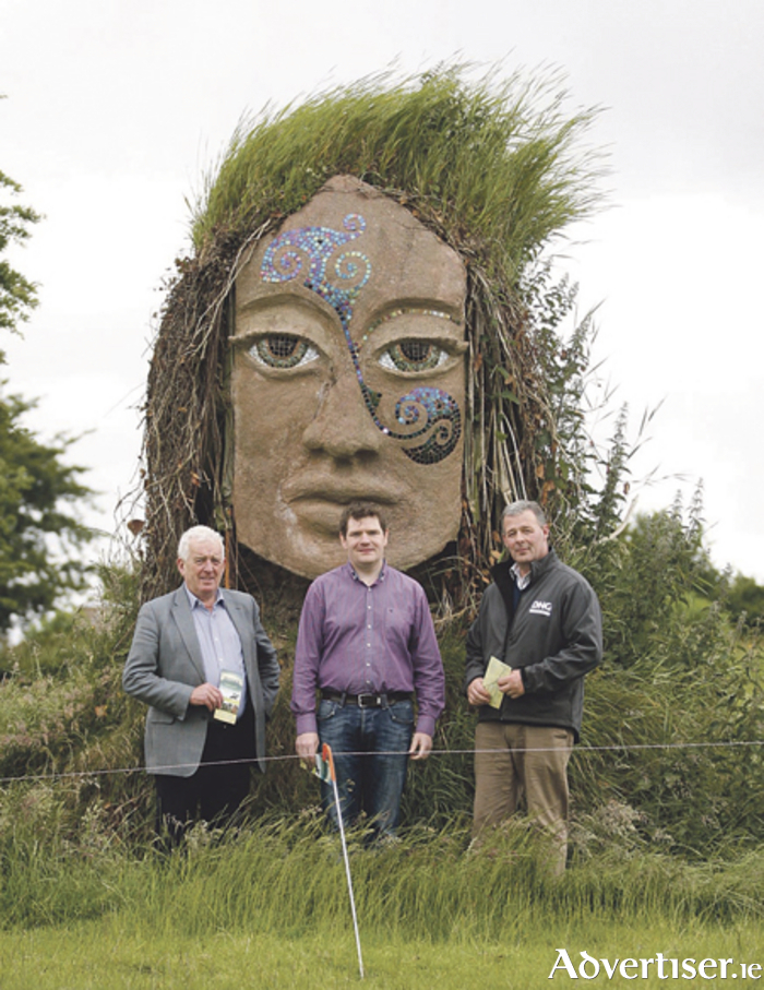 Cllr Tom Farrell, Deputy Peter Burke, and Cllr Andrew Duncan are pictured at Uisneach