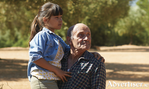 A still from the film The Olive Tree.