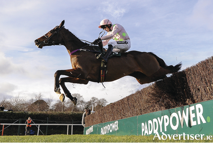 Douvan will return to this year's festival seeking his third win in three outings. Photo: Seb Daly/Sportsfile