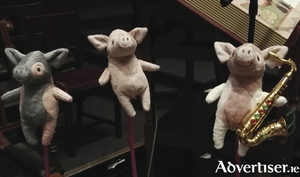 See these little guys with Evelyn Cusack at WhistleBlast Quartet's upcoming show at the Town Hall.