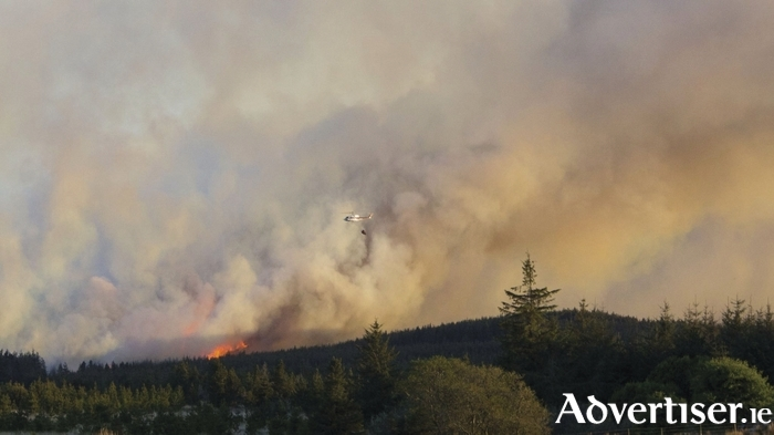 A helicopter dropping water over the Cloosh Valley fire yesterday.