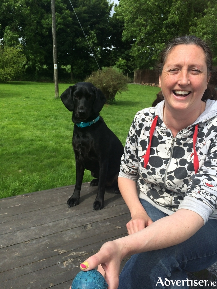 Hanley and Emma Whelan from Hollybarn Dog and Puppy Training was set up in the West of Ireland and is run by leading Irish Dog Trainer, Animal Behaviourist and qualified Veterinary Nurse Emma Whelan