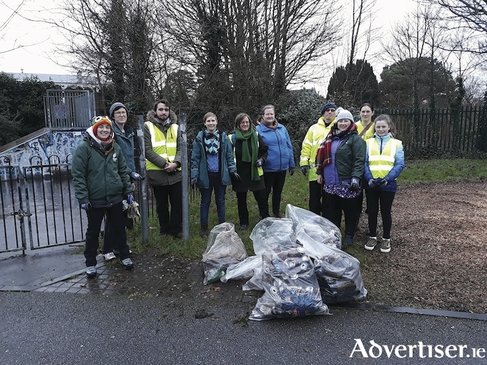 Green candidate Paulline O'Reilly with volunteers at the recent clean-up.