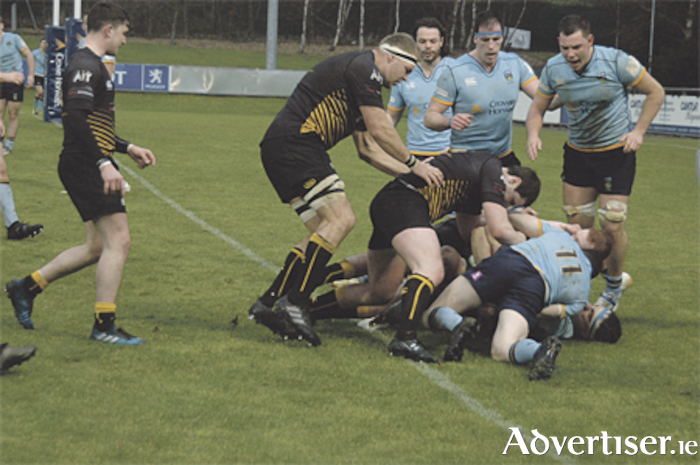 Buccaneers bundling over the UCD line, but no try was awarded on this occasion