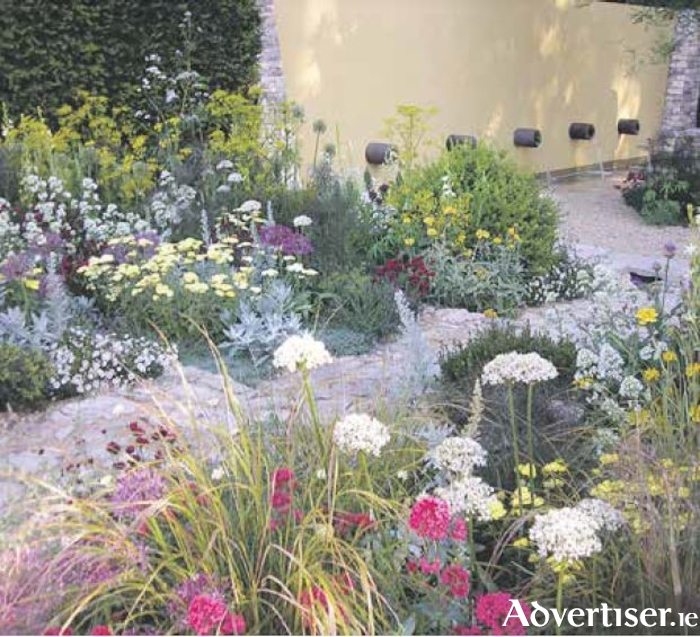 A wide variety of blooms encourages biodiversity, as seen in this Chelsea show garden