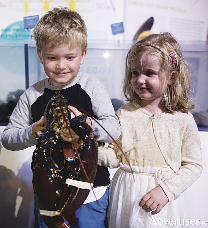 Hugo and Ciara Johnston with a very old lobster at SeaFest 2017, the National Maritime Festival, in Galway. Photo: Andrew Downes, xposure.