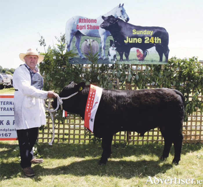 Pictured at the Athlone qualifier of the 2018 Aldi Angus All Ireland Bull Calf Championship was 'Berry Packy', along with Patrick Murphy from Ross, Glasson, Athlone, Co. Westmeath.