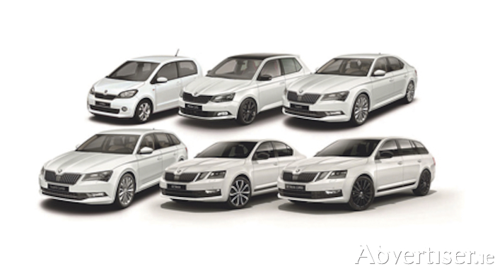 The current Skoda range