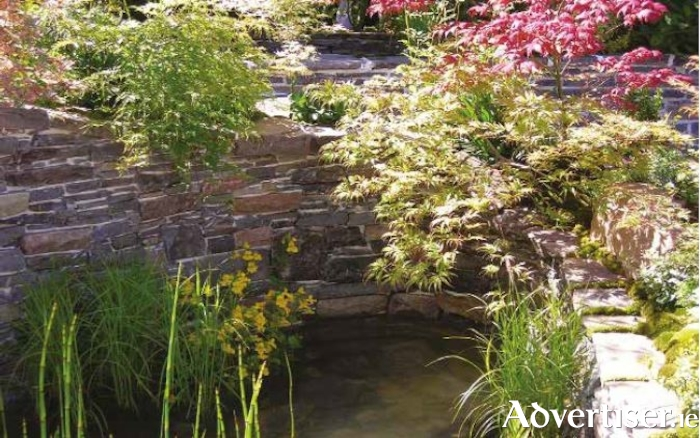Japanese maples edge a water pool in this Chelsea show garden