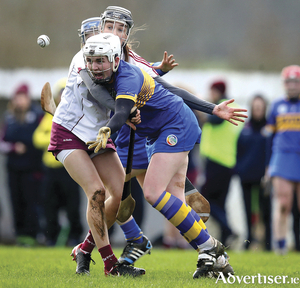 Carrie Dolan of Galway wraps up Tipperary's Gemma Grace in action from the Camogie League division one game. 