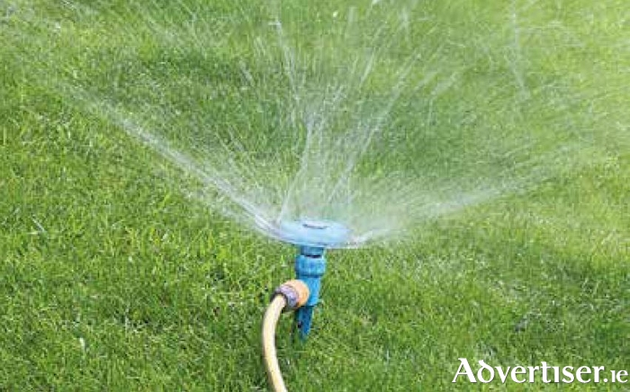 Water your freshly laid turf with a fine mist or spray until established