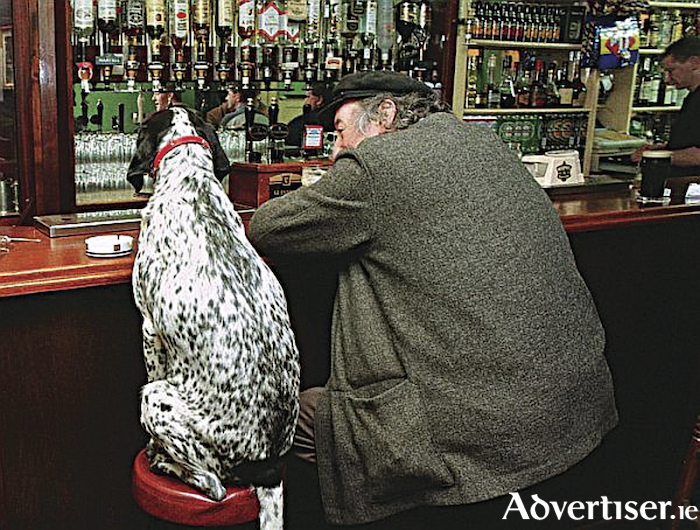 Rarely seen without his dog Professor Ó Céidigh always enjoyed a pint in good company. (Photo Connacht Tribune)