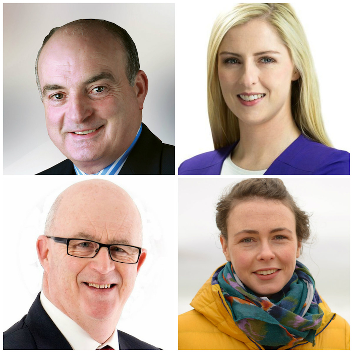 In and out: Fine Gael's Paddy Burke retained his Seanad seat, while Fianna Fail's Lisa Chambers bounced back from her disappointment at losing her seat in the Dail to be elected to the upper house - while Sinn Fein's Gerry Murray and The Green Party candidate Saoirse McHugh narrowly missed out on seats.
