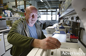 Professor Brian McStay at the Biosciences Research Centre at NUI Galway. Photo: Aengus McMahon.