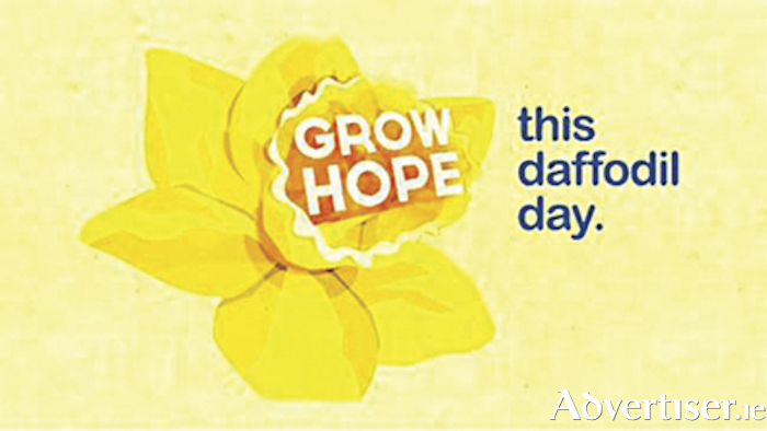 Irish Cancer Society are imploring public support as Daffodil Day approaches